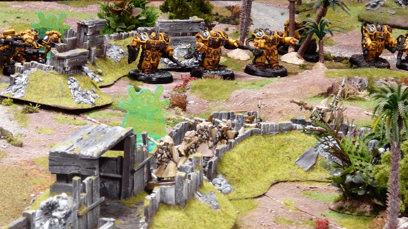 Warhammer 40K. Galerie de Batailles ! - Page 6 P1200871