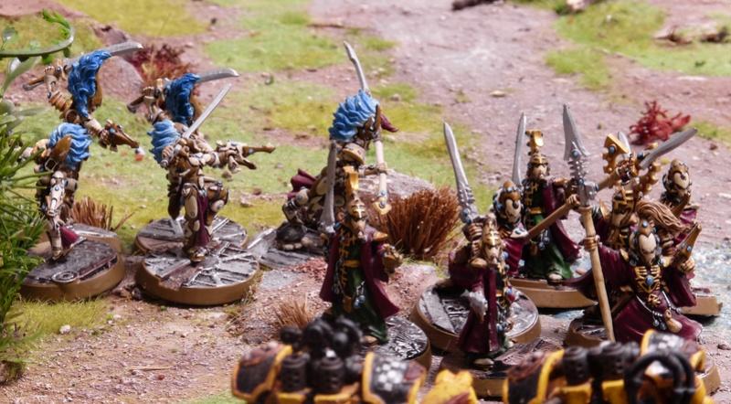Warhammer 40K. Galerie de Batailles ! - Page 6 P1200912