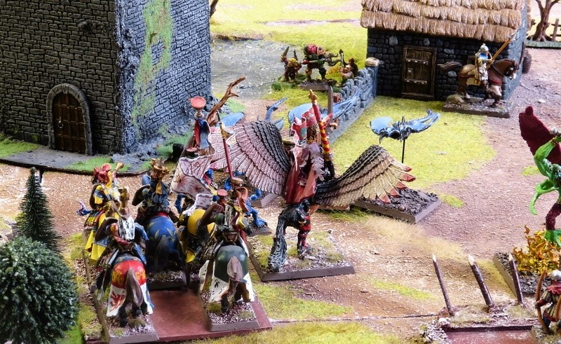 Warhammer Fantasy, Galerie de Batailles - Page 16 P1200934