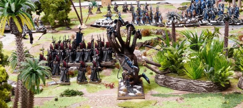Warhammer Fantasy, Galerie de Batailles - Page 16 P1210045