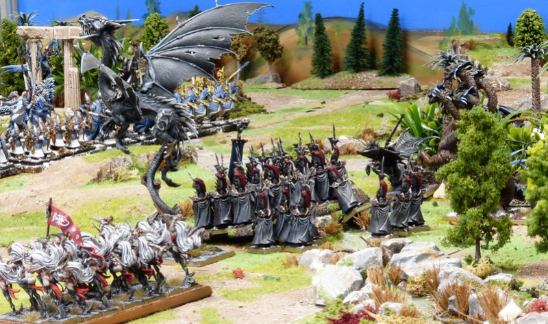 Warhammer Fantasy, Galerie de Batailles - Page 16 P1210048
