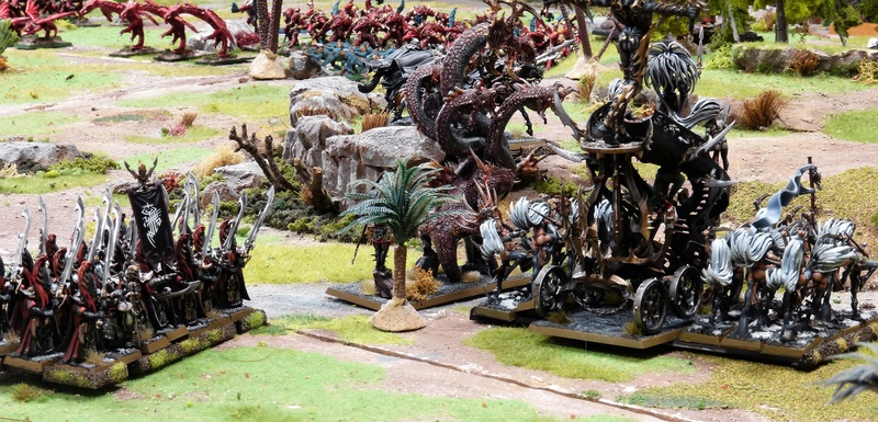 Warhammer Fantasy, Galerie de Batailles - Page 16 P1210053