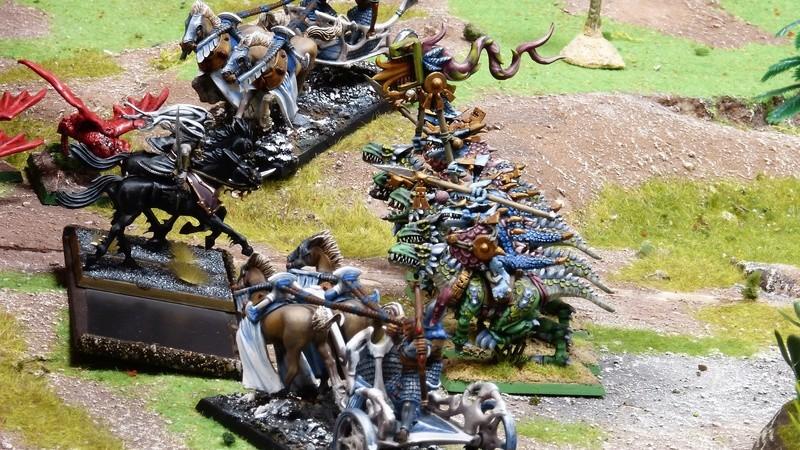 Warhammer Fantasy, Galerie de Batailles - Page 16 P1210058