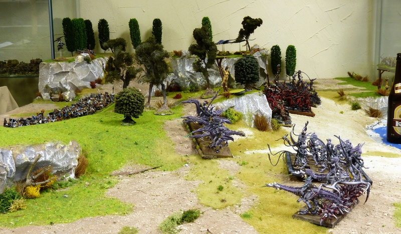 Warhammer Fantasy, Galerie de Batailles - Page 16 P1210298