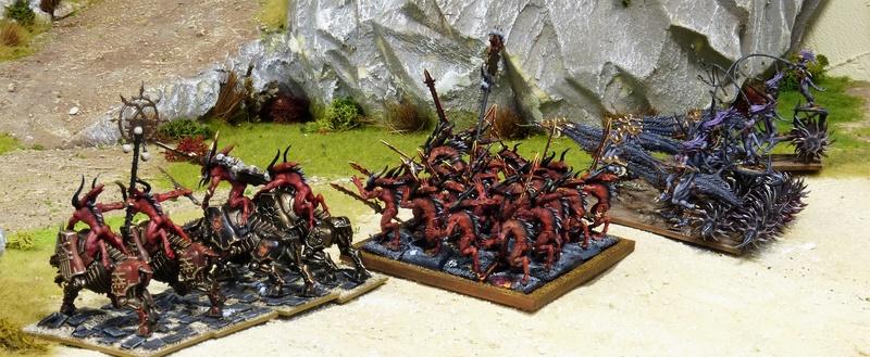 Warhammer Fantasy, Galerie de Batailles - Page 16 P1210299