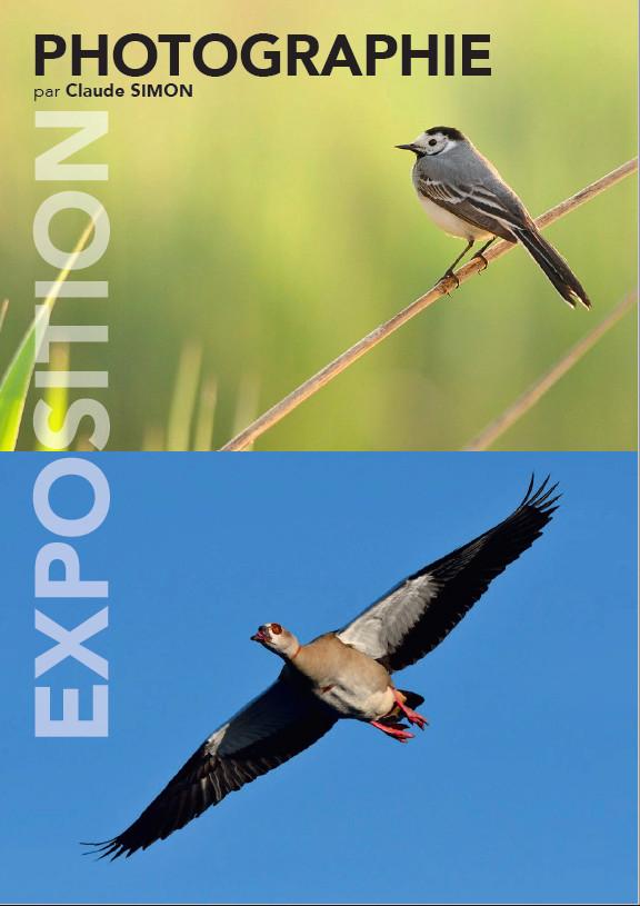 """Exposition photo à Cattenom """"EN VOL"""", du 11 au 27 mai 2018 Expo_p11"""