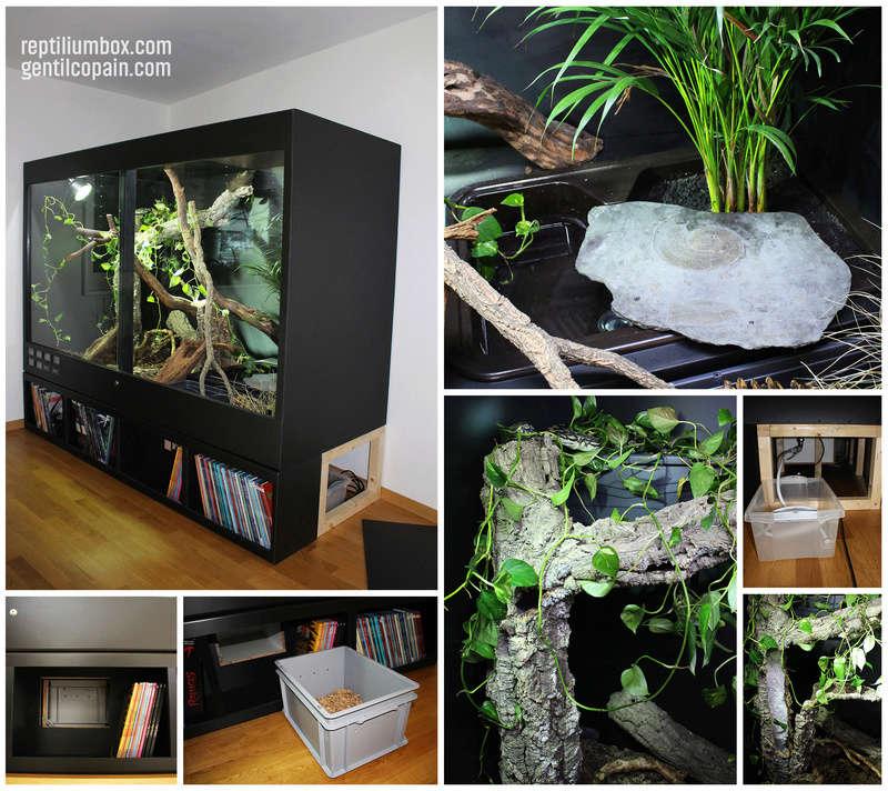 Mes Installations de chez ReptiliumBox Reptil10