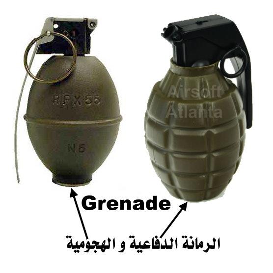 إن معلوماتي عن الجيش الوطني الشعبي أصبحت قديمة Grenad10