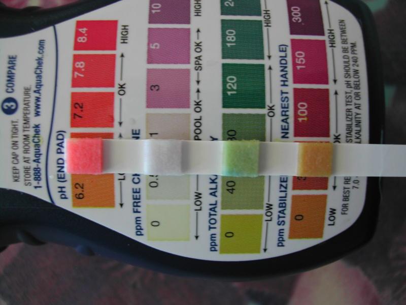 problème eau verte Dscn1812