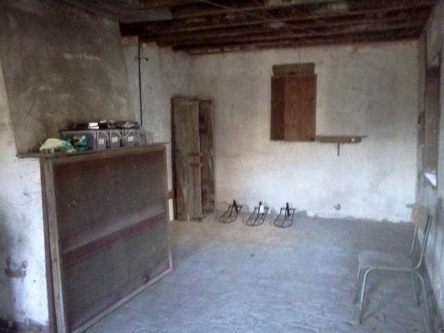 Nouvelle résidence pour Dakota et Bulcia - Page 3 Img20111