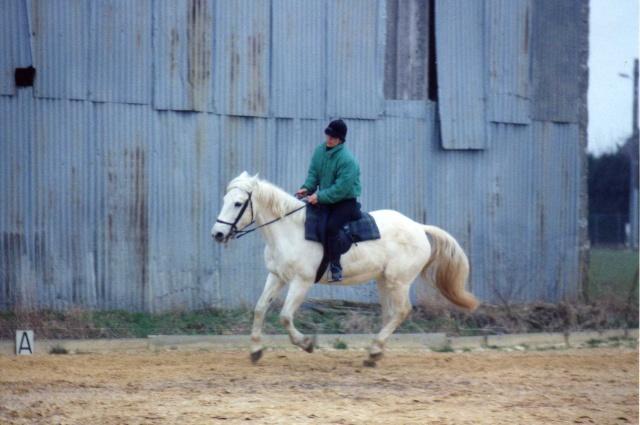 Les chevaux de coeur Img43211