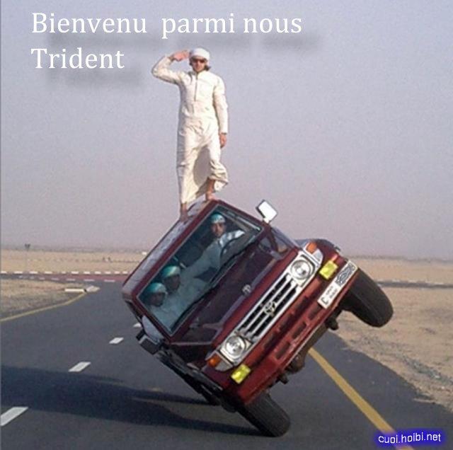 Trident.65 Carpro10