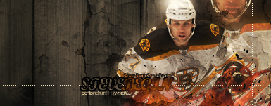 Boston Bruins . Begin_10