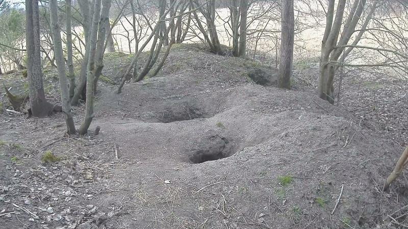Badger Castle  (Saaremaa Island) Vlcsn120