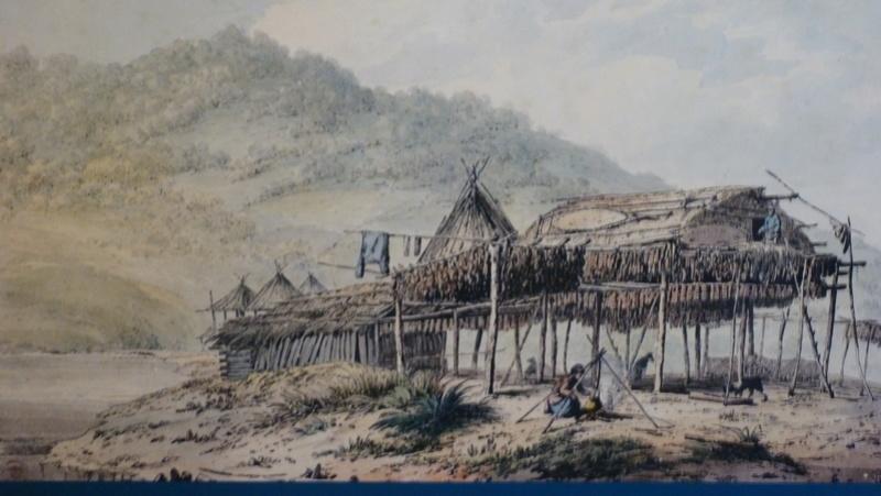 habitat paléo (non mais) P1090510
