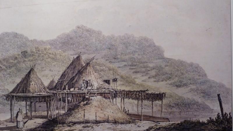 habitat paléo (non mais) P1090512