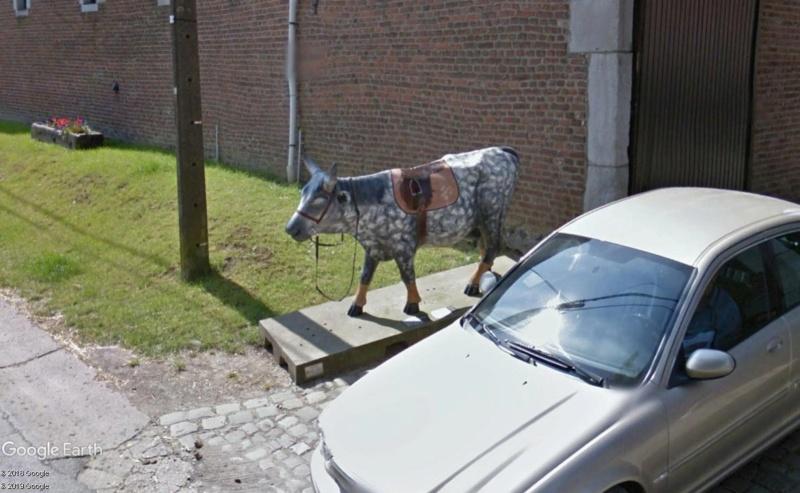 STREET VIEW : les statues de vaches - Page 3 Vache10