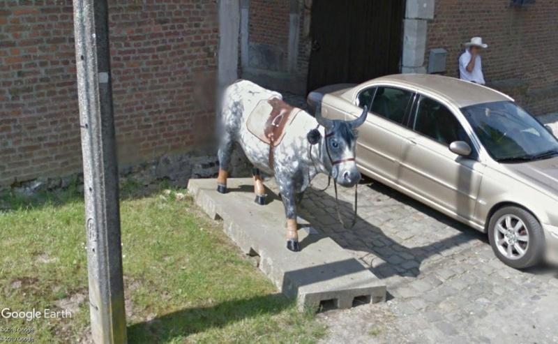 STREET VIEW : les statues de vaches - Page 3 Vache110