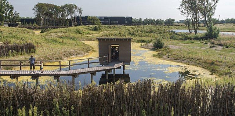 100 lieux à voir en Belgique - Page 2 Zwin-n10