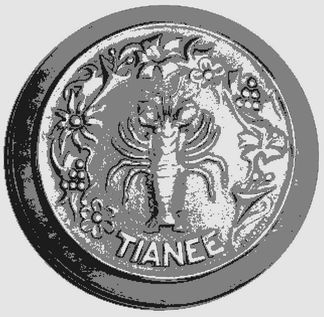 TIANEE (GABARE) 0120