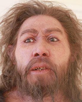 Vive le métissage Cro-Magnon - Néandertal Neande10