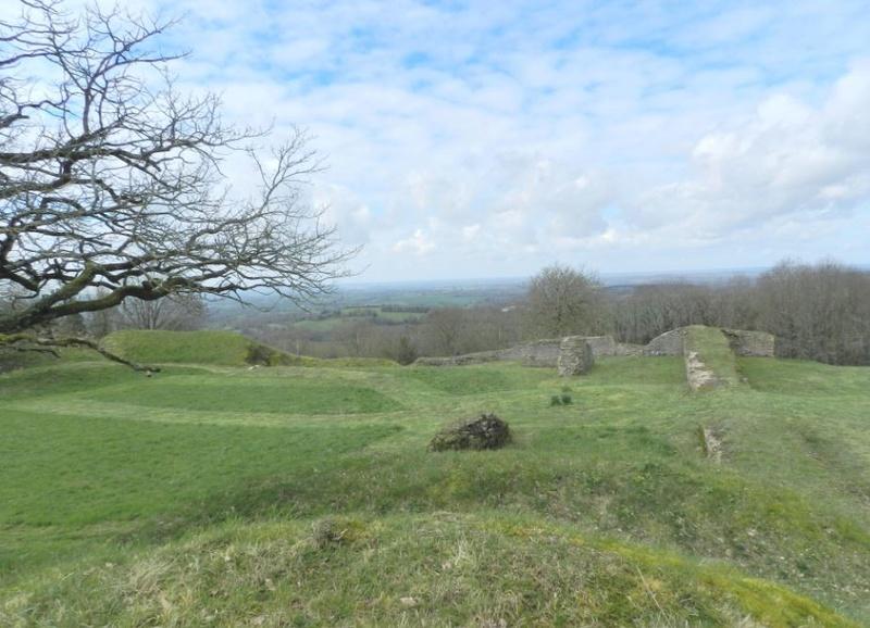 Le Rubricaire (fort romain en Nord-Mayenne) et la botanique Rub110