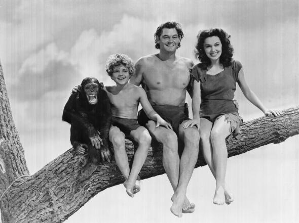 Mes bonheurs du Journal Tarzan10