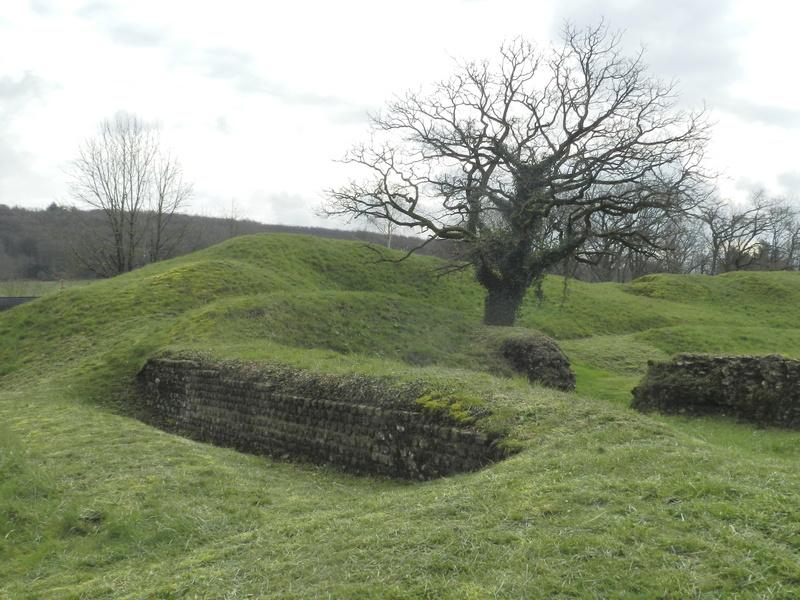 Le Rubricaire (fort romain en Nord-Mayenne) et la botanique Vauvyr44