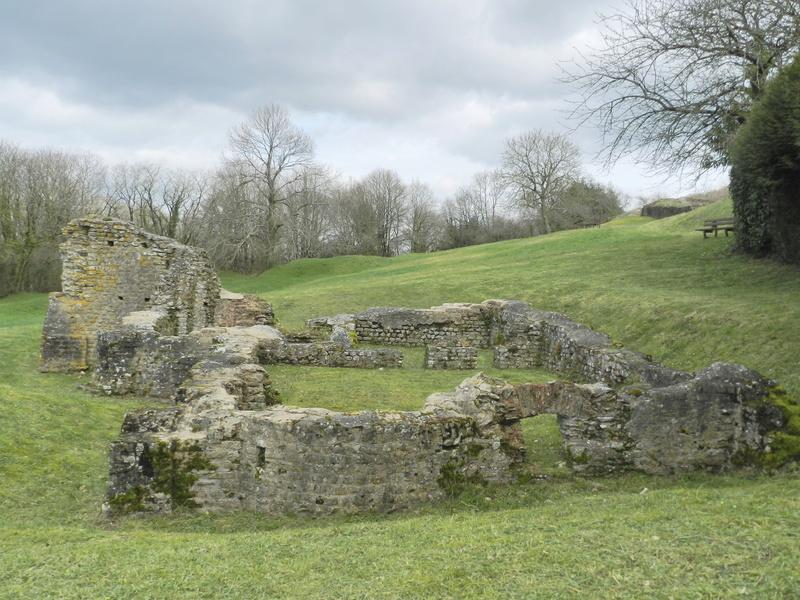 Le Rubricaire (fort romain en Nord-Mayenne) et la botanique Vauvyr46
