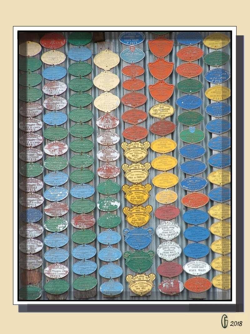 Et si Van Gogh était venu lui-aussi à La Bazouge? (Collages et pastiches) Y_197111