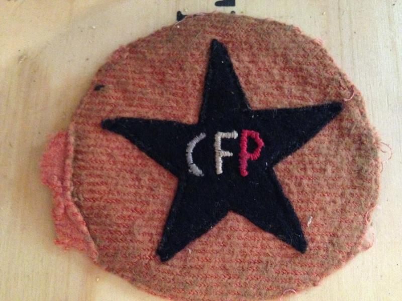 Demande d information insigne CFP Image64