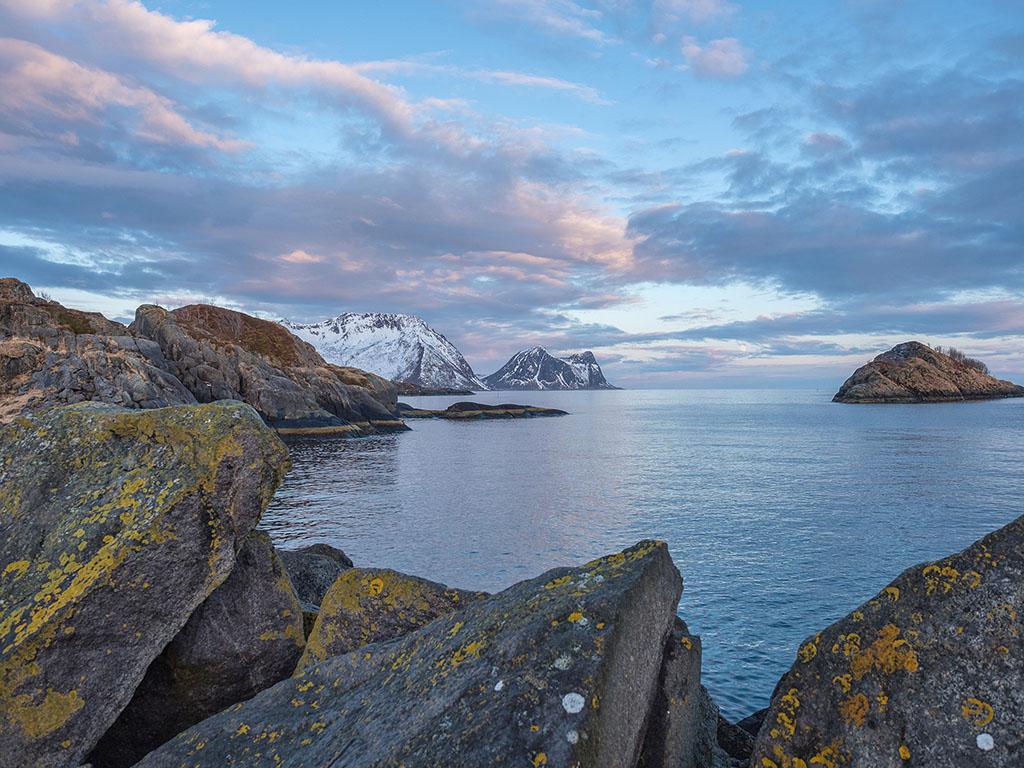 Norvège- Île de Senja  P4270110