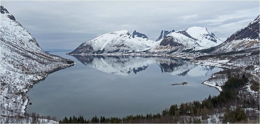Norvège- Île de Senja  P4270111