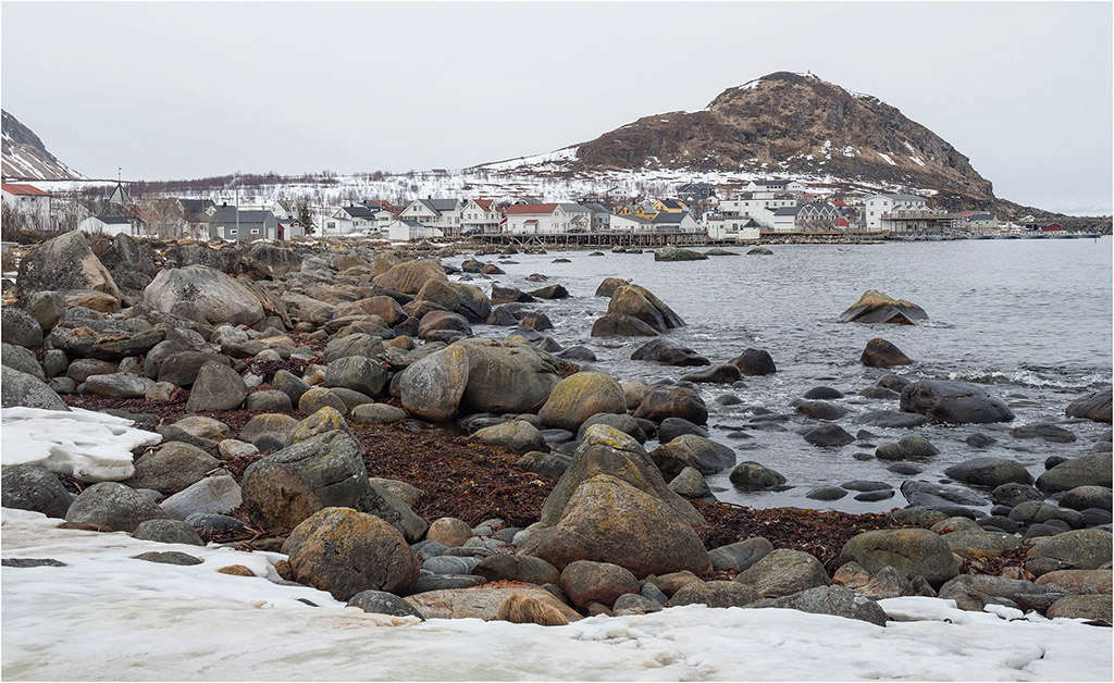 Norvège- Île de Senja  P4270211