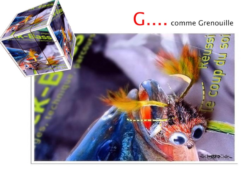 concours photo de la semaine du 22 au 28 fevrier 2010 - Page 2 Grenou10