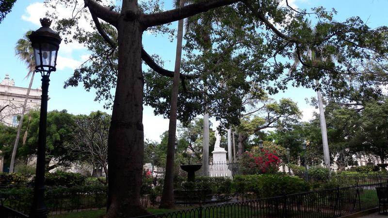 Au pays des Havanes 014_pl10