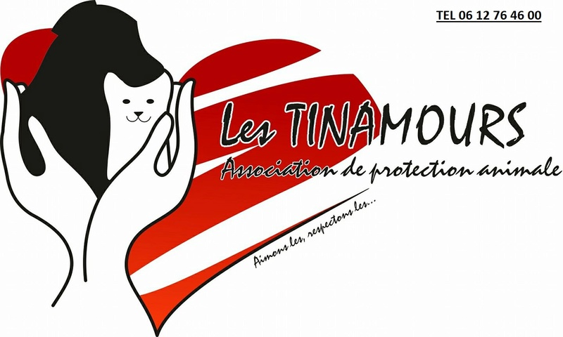 Association les Tinamours
