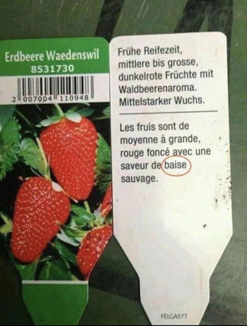 Humour .. suisse  49334b10