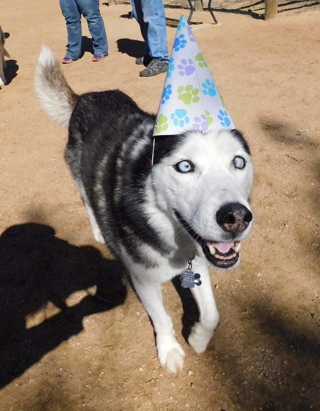 Finn's 1st Birthday Dscn2417