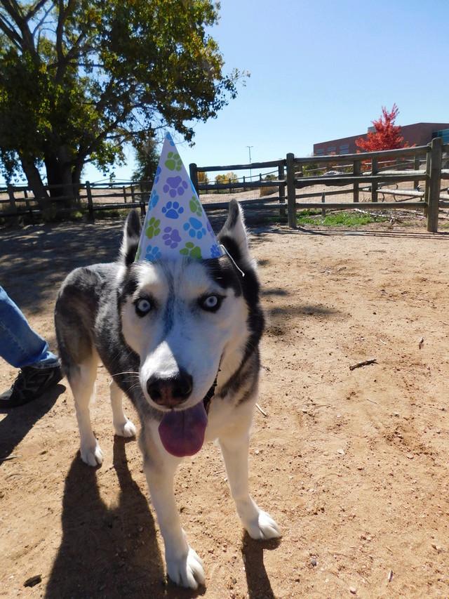 Finn's 1st Birthday Dscn2418