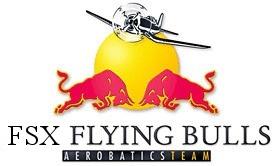 FSX Flying Bulls