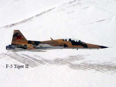 القوات الملكية الجوية  Forces aériennes royales 91943910