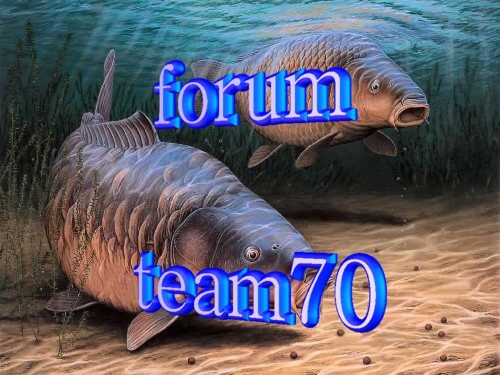 team 70