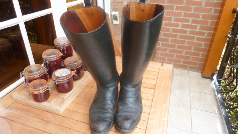 Bottes Gendarmerie en cuir ALPINS-NOV1 00211