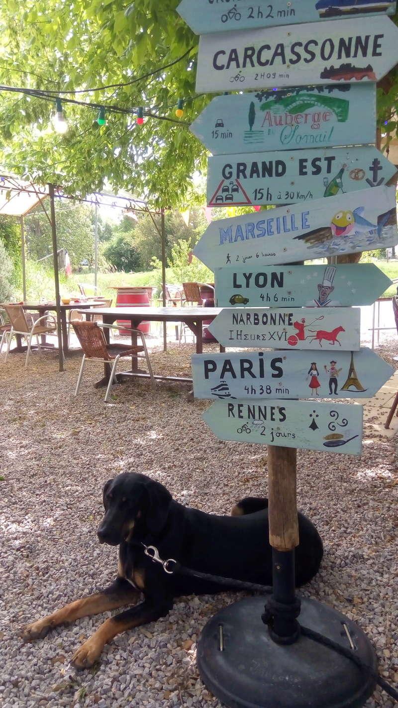 Périple en Pays Cathare via Limoges Img_2167