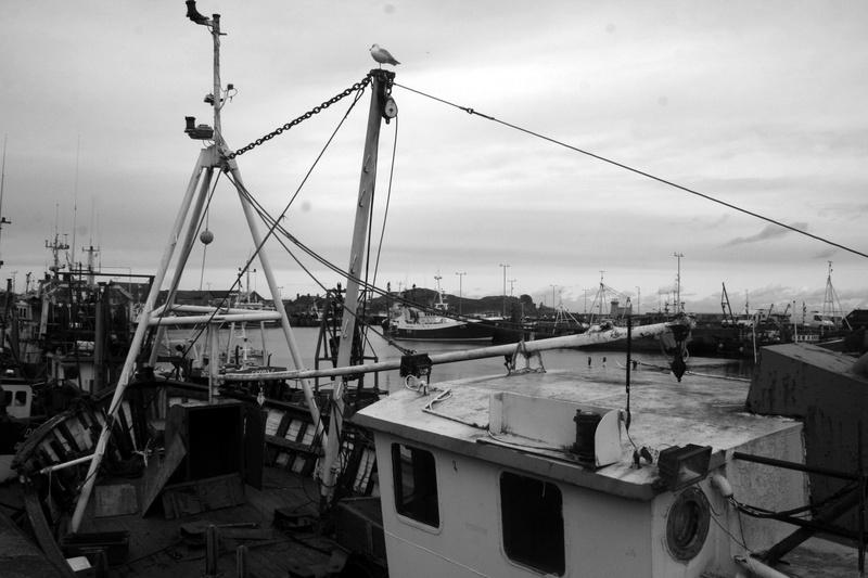 de port en port .... Img_2910