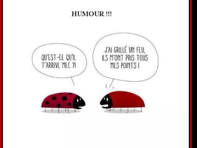 HUMOUR EN VRAC - Page 6 Ooapin12