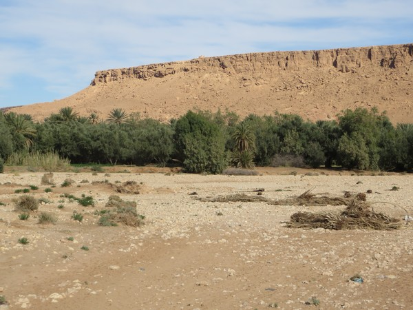 [Maroc Camp/Dernières nouvelles] au Hakkou : Ahmad, nouveau Guide des Espaces Naturels Akkou_16