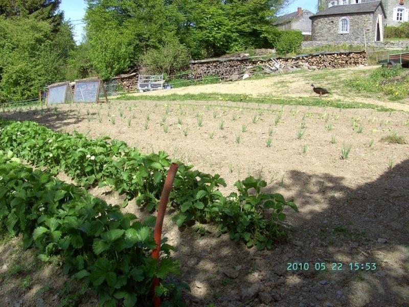 Je parle de mon jardin Bild3714