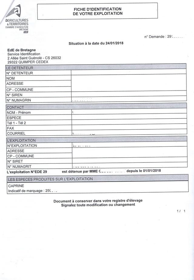 Tuto : la déclaration des chèvres en France Img56310